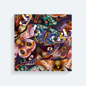 Butterflies BaeLolly Square Canvas Frame